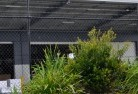Ajana Wire fencing 20